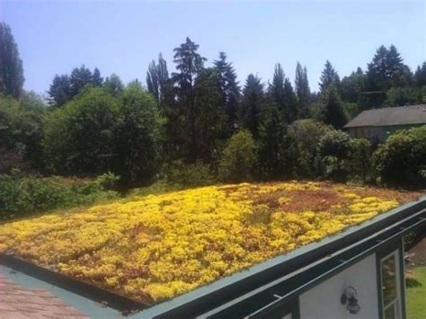 Landscape Supply Shelton Wa Liven Up Your Roof Stackman Custom Homes