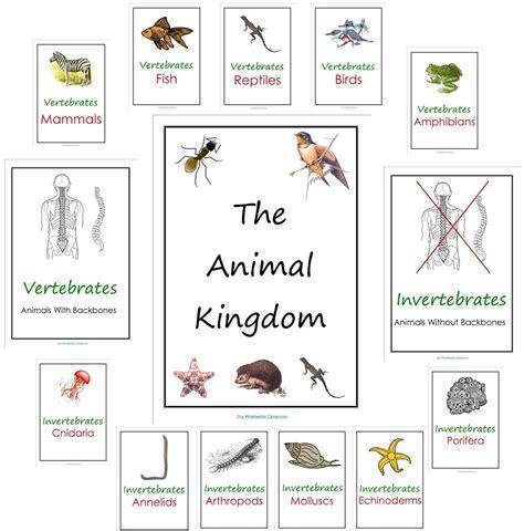 printable animal kingdom our animal kingdom notebooks with printable materials