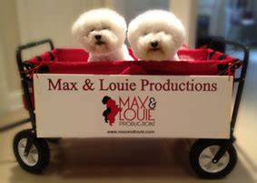 auditions max louie productions