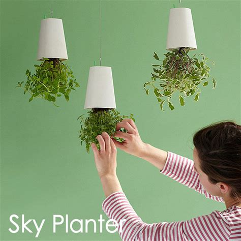 small hanging plants aliexpress buy decorative small hanging plant pot