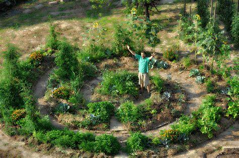 giardino sinergico l orto sinergico cateringveg