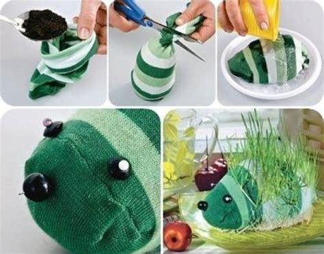 diy sock growing grass hedgehog how to make diy hedgehog sock planters how to