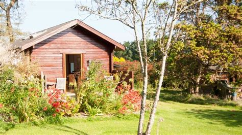 The Uk S Best Dog Friendly Hotels From Devon And Dartmoor Cherry Cabin