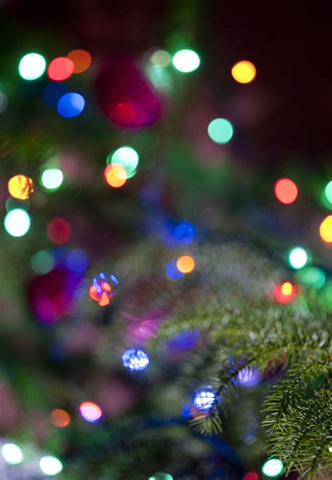 image of christmas lights background bokeh freebie