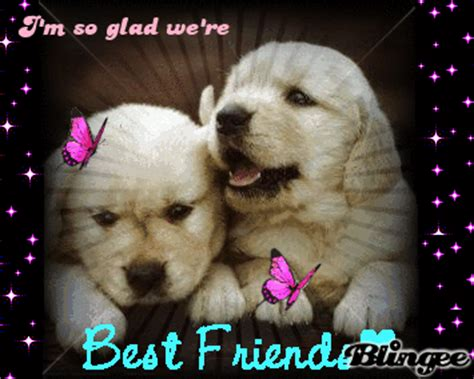 best friend puppies best friend puppies picture 99575799 blingee