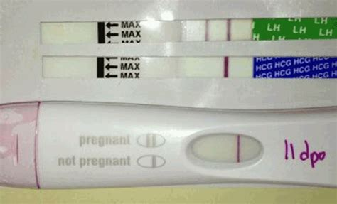 negative pregnancy test after infertility treatment