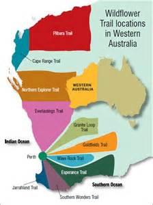 wa wildflowers wanderings rainbow tourism australia