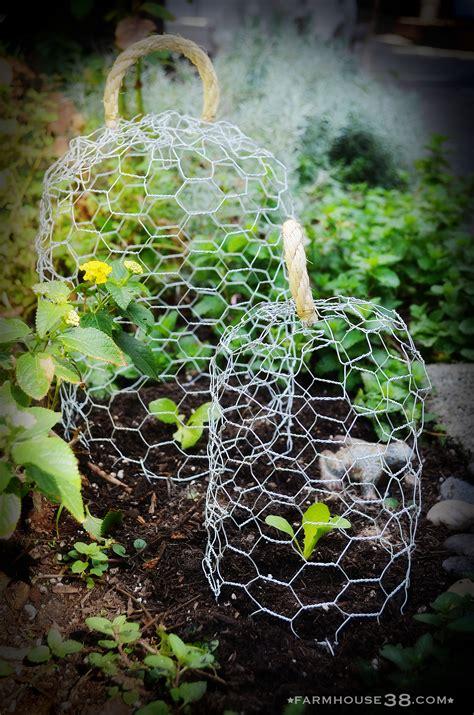 Garden With Wire Chicken Defense Farmhouse38