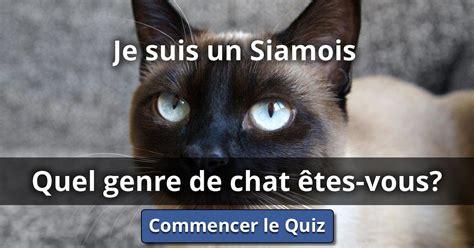 je suis le genre 9782081417472 je suis un siamois quel genre de chat 202 tes vous lusorlab quizzes