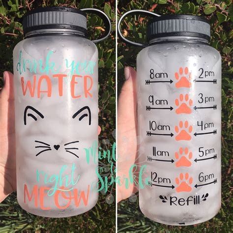 How To Make Cat S Claw Drink For Detox by Drink Your Water Right Meow Motivational Water Bottle With