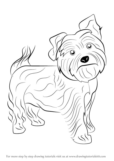 how to draw a yorkie step by step learn how to draw a yorkie dogs step by step drawing tutorials
