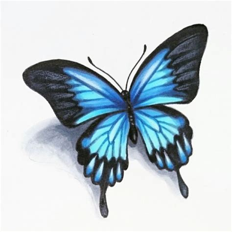 realistic butterfly tattoo designs best 25 realistic butterfly ideas on