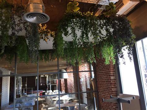 decoracion de interiores con plantas y flores decoraci 243 n de interiores con plantas para eventos y hosteleria