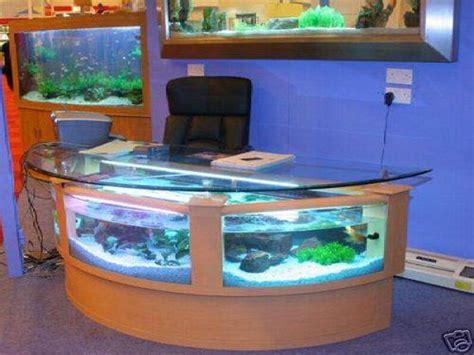 Best Fish For Office Desk 17 Best Ideas About 100 Gallon Aquarium On Betta Aquarium Betta Tank And Pet Fish