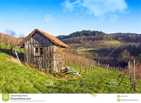 Hut Cottages by Wooden Cottage Hut In Vineyards Stock Photo Image 43743476