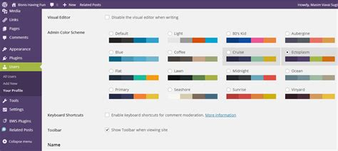 wordpress tips change dashboard color scheme spirit of