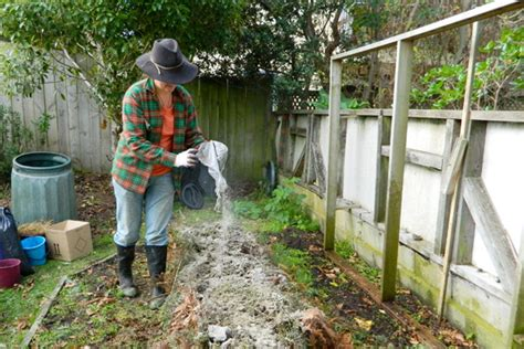 Human Garden by How To Make Fertilizer Plant Fertilizer
