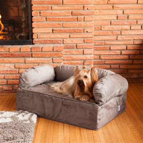 couch for dog best fabric couches for dogs homesfeed