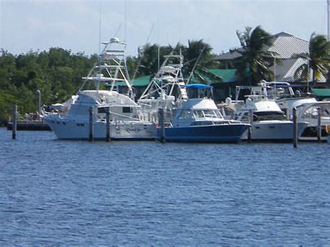boat repair florida best boat motor repair cape coral fl