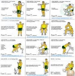 search results for biceps exercise chart hd image