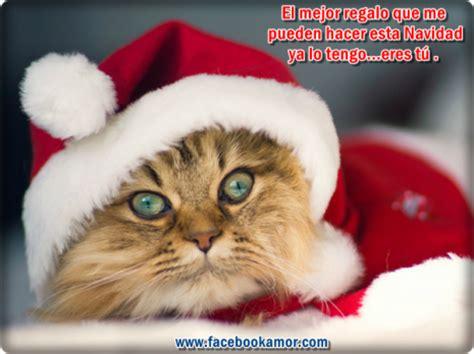 imagenes graciosas de animales en navidad m 225 s de 100 mejores tarjetas de fel 237 z navidad y pr 243 spero