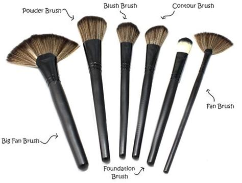 what is a fan makeup brush used for make up brushes and their uses my make up brush set ca
