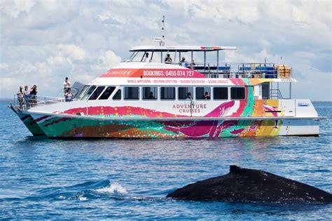 hervey bay boat club fuel whale watch bookings 187 hervey bay boat club
