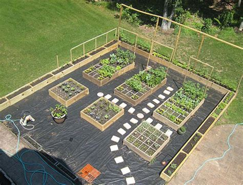 nursery facility layout garden layout ideas positioning design tips pictures