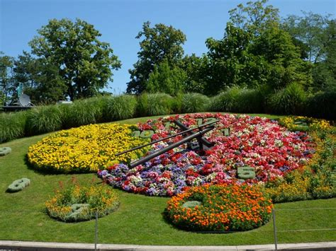 Geneva Flowers 8 geneva flower clock photo