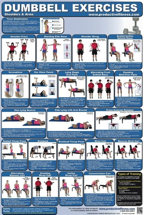 dumbbell exercise poster 2 fitness charts