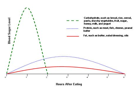 healthy fats blood sugar how food affects blood sugar