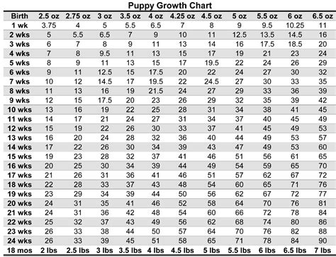 yorkie growth calculator puppy weight chart for yorkies yorkies weight charts yorkies and