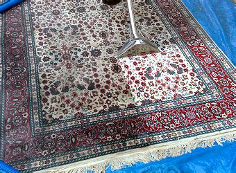Chemical Free Area Rugs by Area Rug Cleaning Specialists No Chemicals 1 Yr