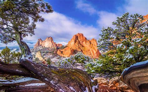 garden   gods colorado winter snow  pine tree sky