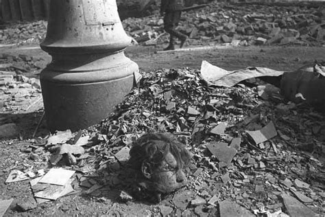 imagenes fuertes segunda guerra mundial graphic world war ii pictures very graphic images