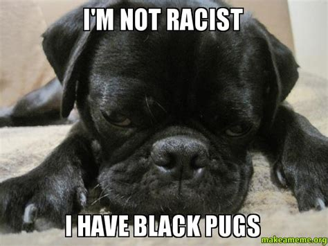 Racist Black Memes - the gallery for gt racist memes black