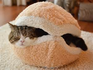 the burger cat bedkeeps your warm on cold winter