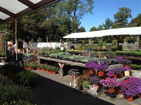Garden Center Jericho Turnpike Florist Gifts Acer S Florist Garden Center