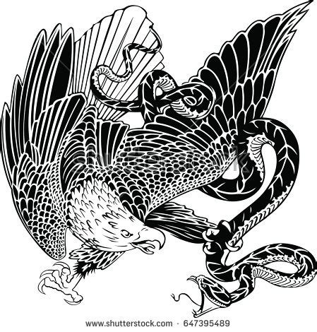 traditional eagle tattoo vector 100 remarkable eagle snake tattoos designs with meanings