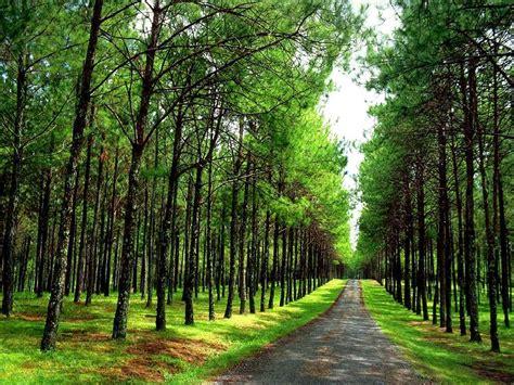 el camino de dagas 8448034708 昌吉回族自治州风景图片全部旅游照片