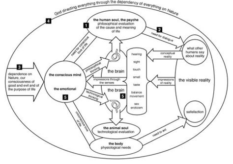 diagram of human being understanding reality chapter 3