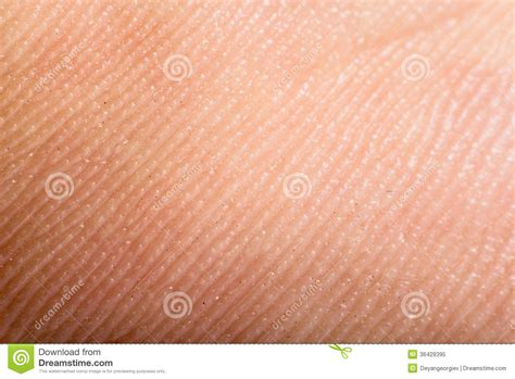 human skin texture macro stock photo 293974619 up human skin macro epidermis royalty free stock photo image 36429395
