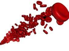 aumentare il ferro con l alimentazione anemia e sport carenza di ferro nell atleta
