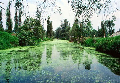 Aztec Floating Gardens by Clean Aztecs Stinky