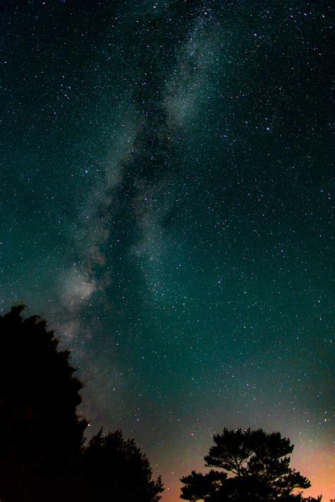 Wallpaper Pohon Bintang | gambar pohon langit bintang bima sakti suasana