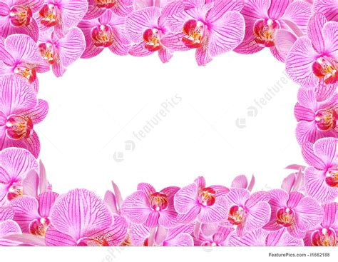 orchideen gestell orchid frame picture