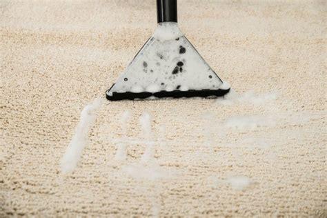 cleaning urine odors  carpet thriftyfun