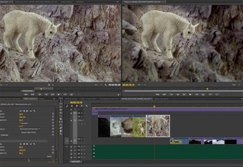 adobe premiere pro jumpy playback accelerate your video workflow with adobe creative cloud