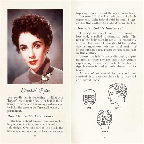 non hollywoodhairstyles for 50 10 hollywood hairstyles of the 50s glamourdaze