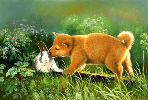 fotos animales fondo de pantalla gifs y fondos pazenlatormenta fondos de pantalla de animales
